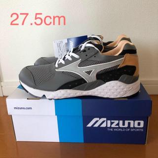 MIZUNO - イルビゾンテ ミズノ 27.5cm