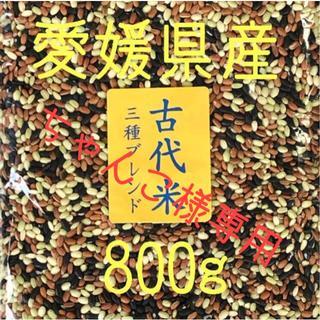 ちゃんこ様専用 古代米3種ブレンド愛媛県産 800g(米/穀物)