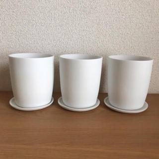 MUJI (無印良品) - 無印 磁器鉢 磁器鉢皿 3つセット