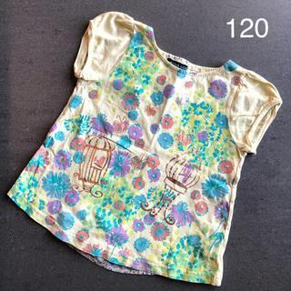 アナスイミニ(ANNA SUI mini)のアナスイミニ  カットソー  黄色系(Tシャツ/カットソー)