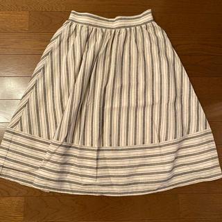 エベルモーション(EBELE MOTION)の新品タグ付き スカート(ひざ丈スカート)