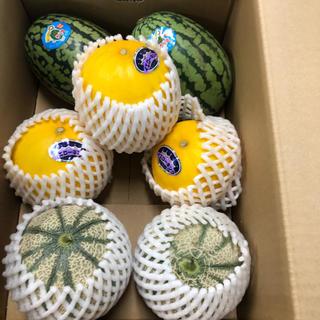 長崎県島原産!!美味しいスイカとメロン!!(フルーツ)