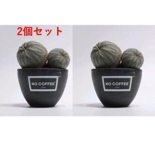 【2個セット】NO COFFEE BOTANIZE .blnk(花瓶)