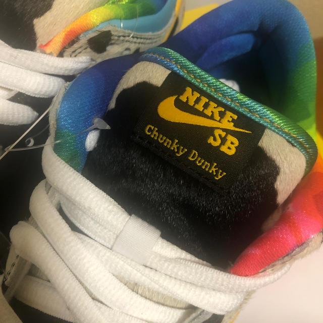 NIKE(ナイキ)のBEN & JERRY'S × NIKE SB DUNK LOW PRO  メンズの靴/シューズ(スニーカー)の商品写真