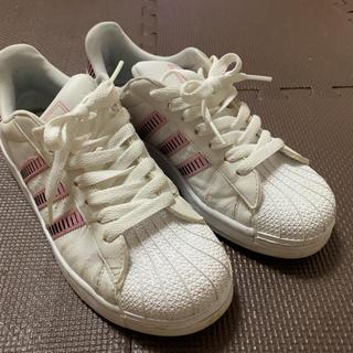 adidas - アディダス スニーカー 23.5