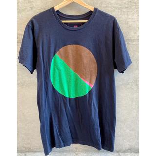 アンリアレイジ(ANREALAGE)のさくら カットソー / AZ(Tシャツ/カットソー(半袖/袖なし))