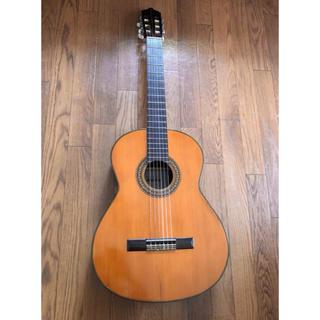 Shinano クラシックギター (クラシックギター)