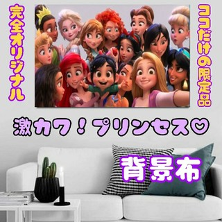 ディズニー(Disney)の【お取り寄せ確認用】 プリンセス 背景布 インスタ映え インテリア(ポスター)