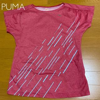プーマ(PUMA)の【PUMA】Tシャツ(Tシャツ(半袖/袖なし))