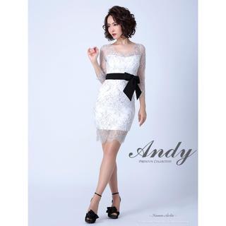 Andy - Andy レースミニドレス