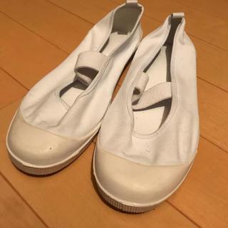 上履き 上靴 23センチ(スクールシューズ/上履き)