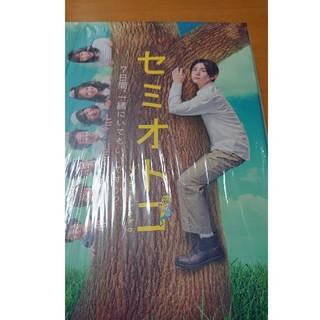 ヘイセイジャンプ(Hey! Say! JUMP)のセミオトコ DVD-BOX DVD(TVドラマ)