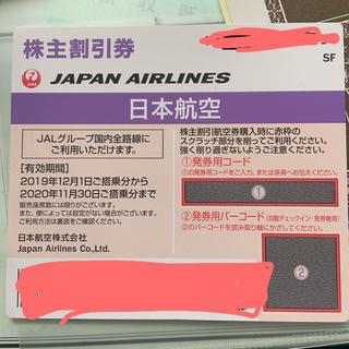 JAL(日本航空) - JAL株主優待券  一枚