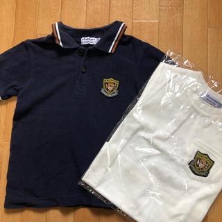 キンダーキッズ 半袖ポロシャツ 半袖Tシャツセット