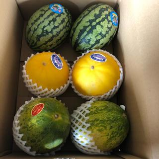 長崎県島原産!!美味しいスイカとメロンセット(フルーツ)