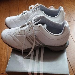 アディダス(adidas)の美品 アディダス ゴルフシューズ23.5cm レディース シューズ(シューズ)