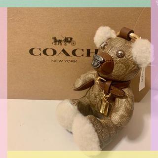 コーチ(COACH)の【COACH】コーチ テディベア シグネチャー  バッグチャーム キーリング(キーホルダー)