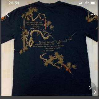 テッドマン(TEDMAN)の【美品】テッドマン Tシャツ Mサイズ(Tシャツ/カットソー(半袖/袖なし))