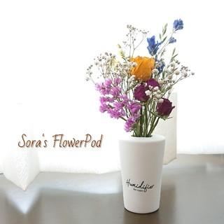 色とりどり(*˙˘˙)♡ドライフラワー スワッグ アレンジメント (花瓶付き)(ドライフラワー)
