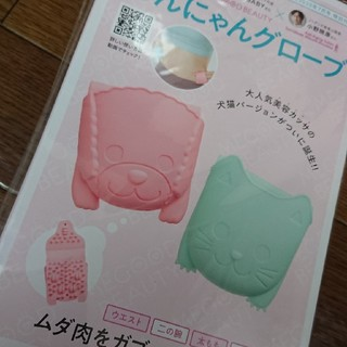 コウダンシャ(講談社)の美容 カッサ ダイエット(フェイスローラー/小物)