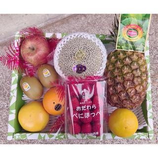 旬のフルーツ詰め合わせセット 果物(フルーツ)