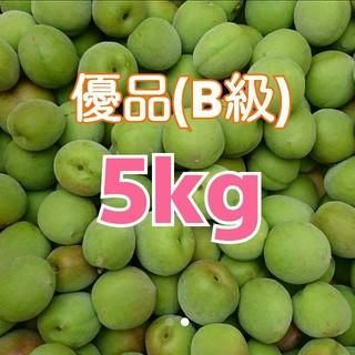 【日本一梅の里】本場紀州南高梅産地直送♪優品(B級) 青梅 2L 5kg(野菜)