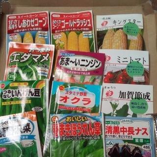 とうもろこし・枝豆セット 野菜の種 5種類セット(野菜)