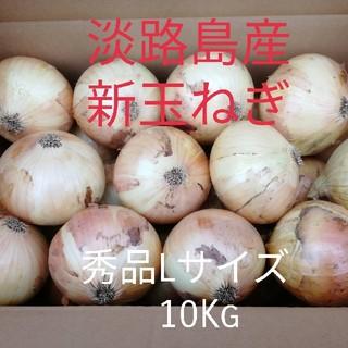 【秀品Lサイズ10Kg】淡路島 新玉ねぎ 玉葱 たまねぎ(野菜)