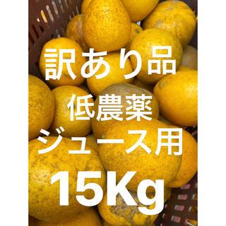 訳あり品 ミカン 小玉 低農薬 宇和ゴールド15Kg   河内晩柑 ジュース用(フルーツ)
