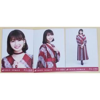 乃木坂46 - 乃木坂46 生写真 井上小百合 スペシャル衣装24  コンプ
