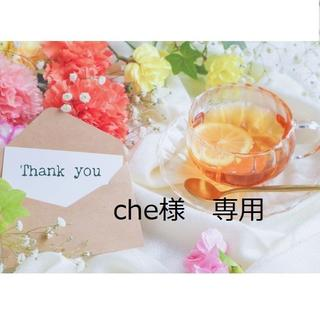 【che様 専用】(チュニック)