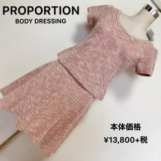 PROPORTION BODY DRESSING - 本体価格13,800円+税✨PROPORTION 上下セット✨