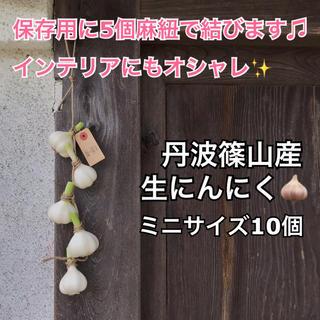 生にんにく 丹波篠山産 ミニサイズ10個 農薬、化学肥料不使用(野菜)