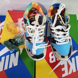 NIKE - 27.5cm Nike SB Dunk Low Ben Jerry's
