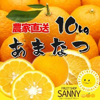 甘夏 10kg(フルーツ)