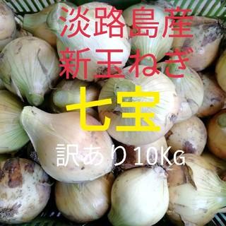 七宝★訳あり10Kg★淡路島 新玉ねぎ 玉葱 たまねぎ(野菜)