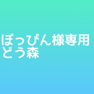 ぽっぴん様専用(アイドルグッズ)