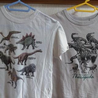 ユニクロ(UNIQLO)のユニクロ 恐竜 Tシャツ 半袖 120 子供服 キッズ(Tシャツ/カットソー)