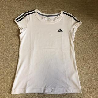 アディダス(adidas)のアディダス Tシャツ レディース M(Tシャツ(半袖/袖なし))
