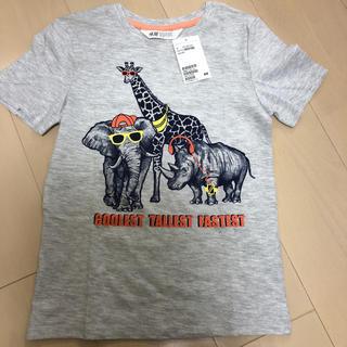 エイチアンドエム(H&M)のH&M Tシャツ(Tシャツ/カットソー)