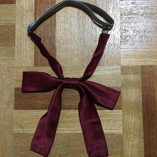 制服リボン (ネクタイ)
