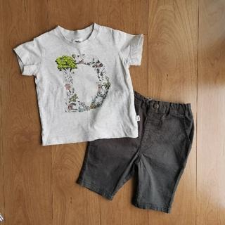 Tシャツ&半ズボン URBAN RESEARCH DOORS