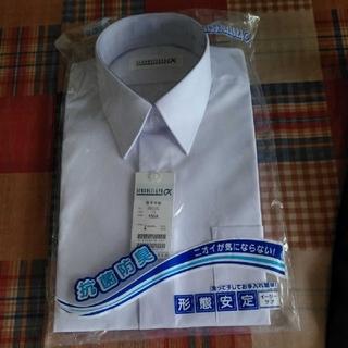 スクール半袖シャツ
