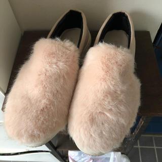 ディスコート(Discoat)のDiscoat 靴 Lサイズ     ディスコート(スリッポン/モカシン)