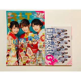 欅坂46(けやき坂46) - 日向坂 雑誌