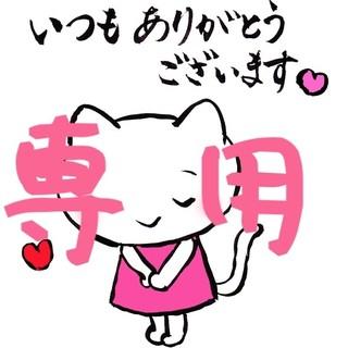 ☆ララ☆様専用(米/穀物)