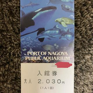 名古屋港水族館チケット(水族館)