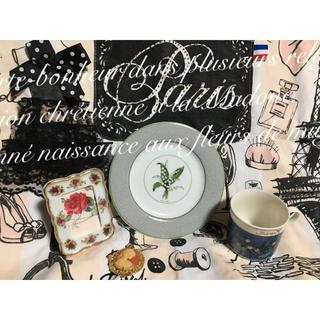 クリスチャンディオール(Christian Dior)のレア  クリスチャンディオール プレート モネ カップ ロイヤルアルバート (食器)