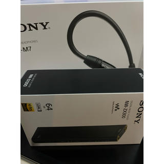 SONY - SONY NW-ZX300