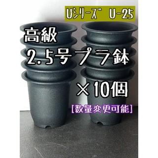 ◎10個◎ 高級 プラ鉢 2.5号 U-25 丸鉢 ミニ鉢 黒(プランター)